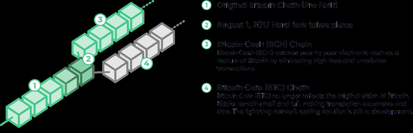 bitcoin vs bitcoin cash scheme