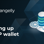 How to XRP Wallet