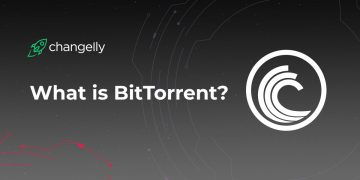 Bittorrent coin review