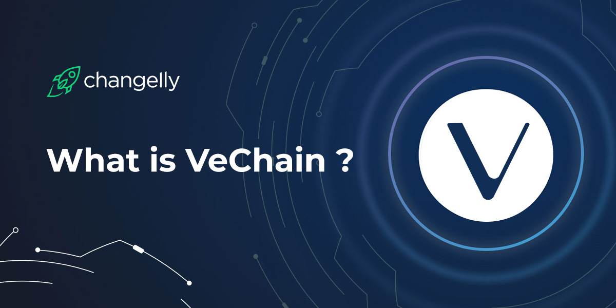 VeChain VET Coin Review