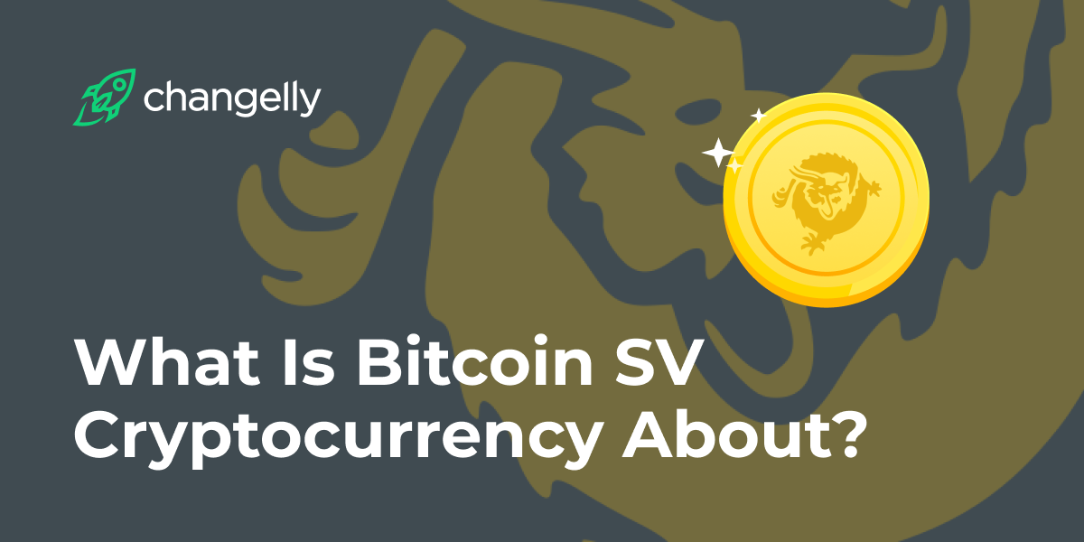 Graphic of Bitcoin SV coin price BSV history