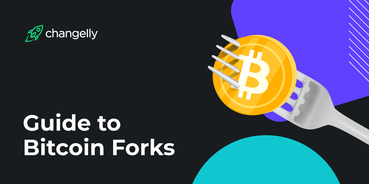 Guide to Bitcoin Forks_ Bitcoin Cash, Bitcoin SV, Bitcoin Gold