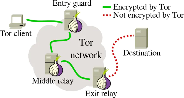 tor network nodes