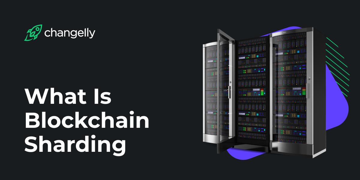 blockchain sharding explained