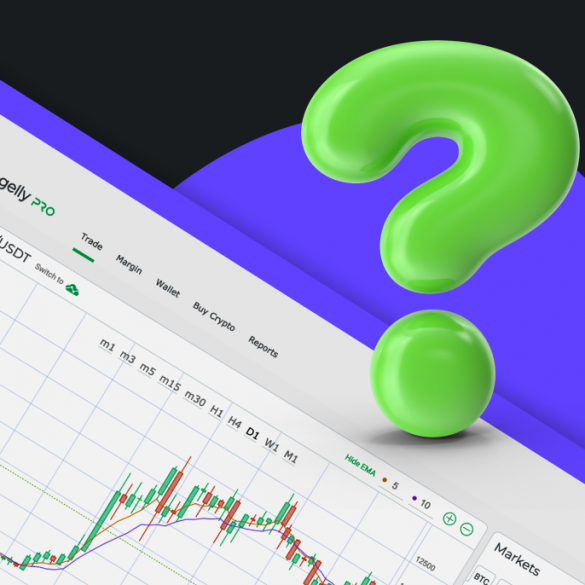 margin trading article on changelly pro