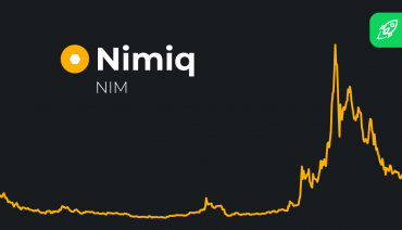 Nimiq Coin Price Prediction article cover with charts
